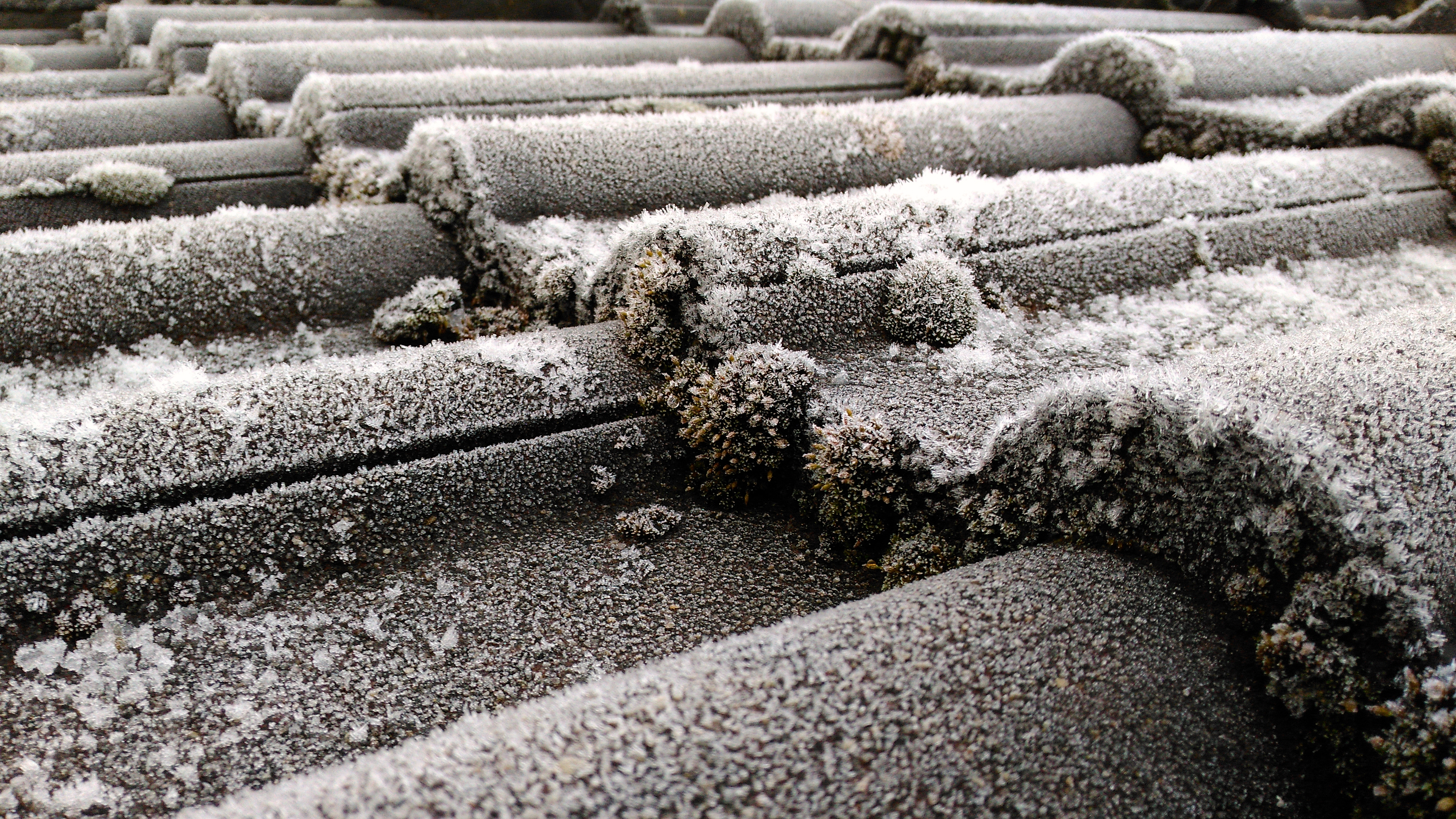 Close-up of hoarfrost on concrete roof tiles with moss in winter.